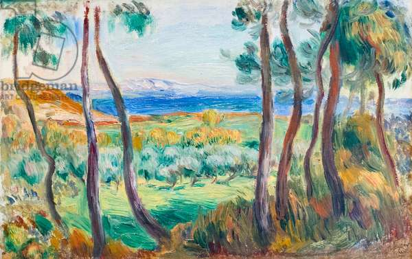 Pines near Cagnes, c. 1910 (oil on canvas)