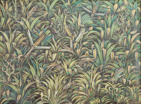 Grasshoppers, 1973, (tempera on canvas)