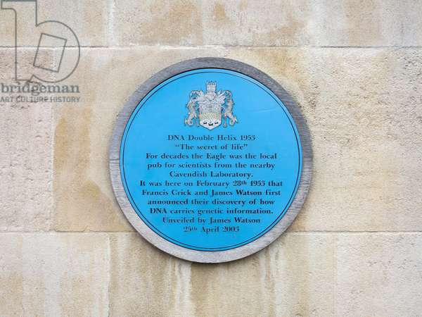 Blue plaque marking the pub in Cambridge where Watson and Crick announced their discovery of how DNA carries information (photo)