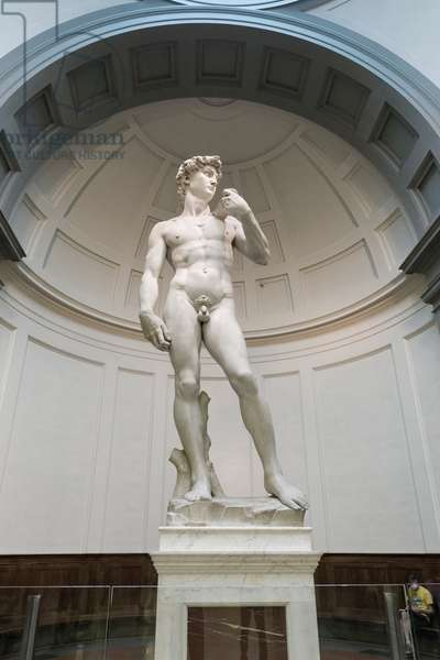 Statue of David, 1501-1504 (marble)