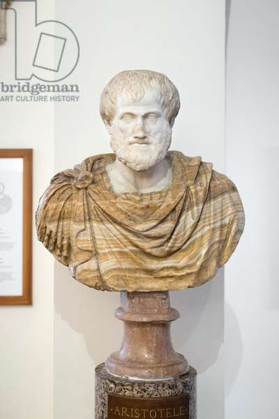 Bust of Aristotle, Ludovisi collection, medium grained crystalline marble and alabastro fiorito for the bust, National Roman Museum, Palazzo Altemps, Rome, Italy