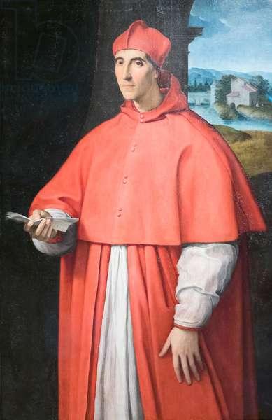 Portrait of cardinal Alessandro Farnese, 1509-11, Raffaello Sanzio (oil on panel)
