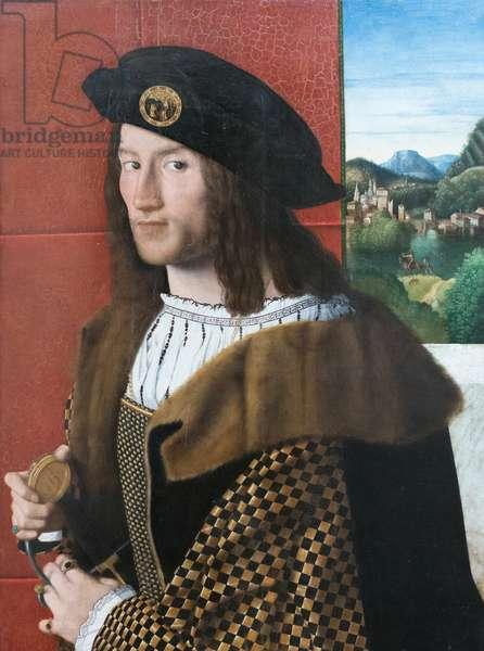 Portrait of a gentleman, 16th century (oil on panel)