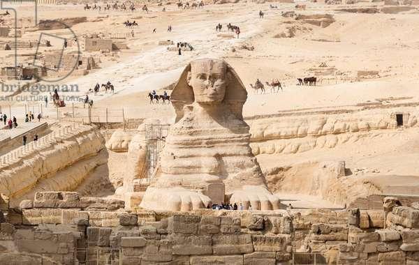 Sphinx, Giza, Cairo, Egypt, 2020 (photo)