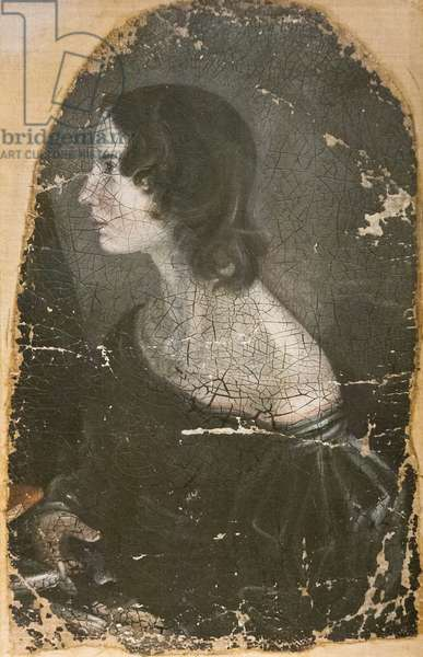 Emily Brontë, c.1883 (oil on canvas)