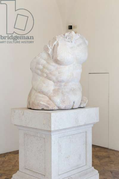Torso of a satyr, Boncompagni Ludovisi collection, National Roman Museum, Palazzo Altemps, Rome, Italy