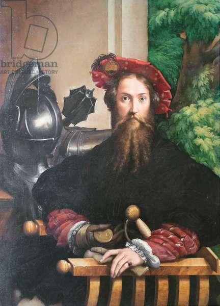 Portrait of Galeazzo Sanvitale, 1524, Parmigianino (oil on panel)