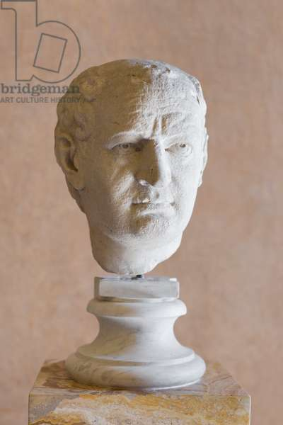 Portrait of Vespasian, Mattei collection, fine grained crystalline marble, National Roman Museum, Palazzo Altemps, Rome, Italy