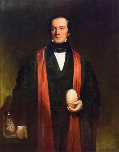 Sir Richard Owen, c.1845 (oil on canvas)