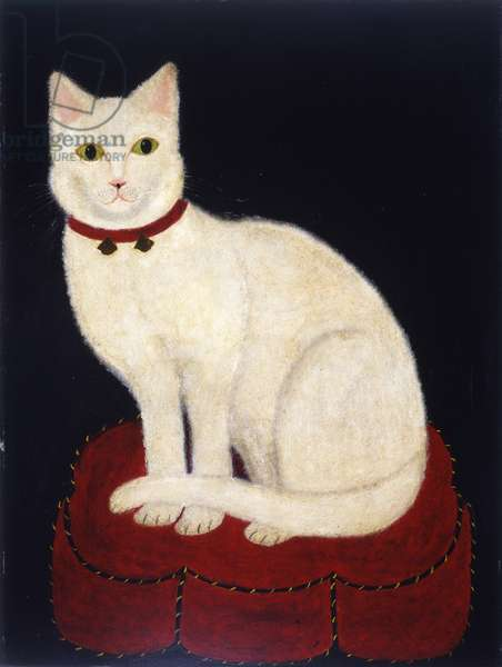 Tinkle, a Cat, 1883 (oil on academy board)