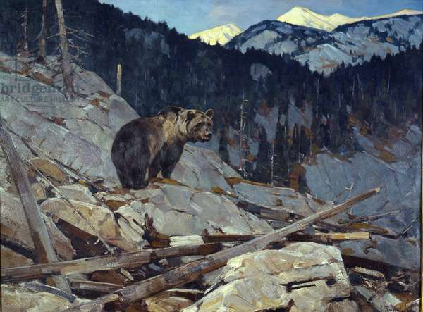 Grizzly Bear, 1895-1950 (oil on canvas)