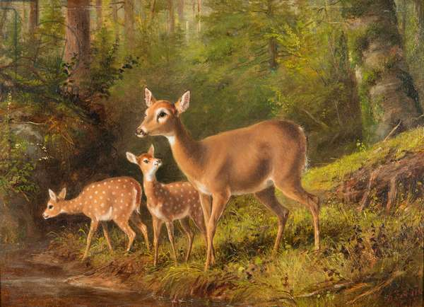 A Doe and Two Fawns, 1875 (oil on academy board)