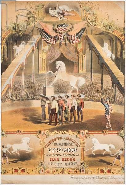 The Wonderfull and Beautifully Trained Horse Excelsior, c.1840 (chromolitho)