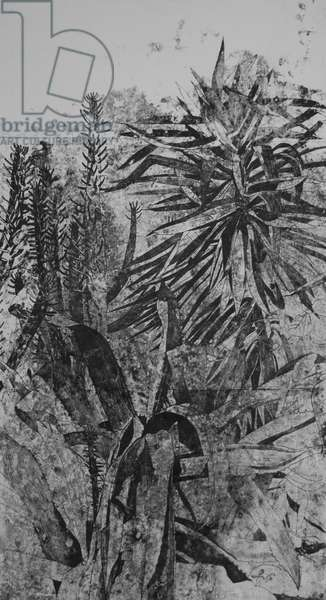 Prickly Plants in the Garden, 2019 (monoprint)
