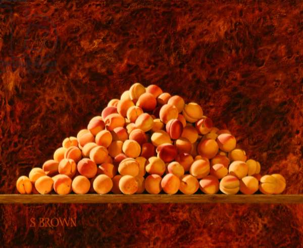 Heap of Apricots, 2009 (oil on canvas)