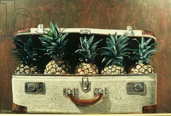 Case of Pineapples, 2000 (oil on canvas)