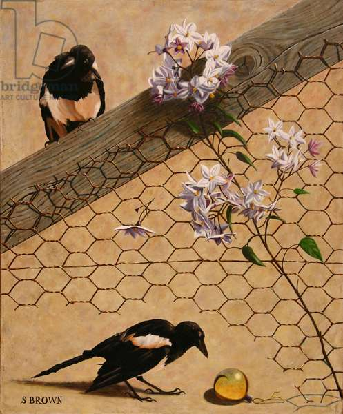 Inquisitive Young Magpies, 2017 (oil on wood panel)