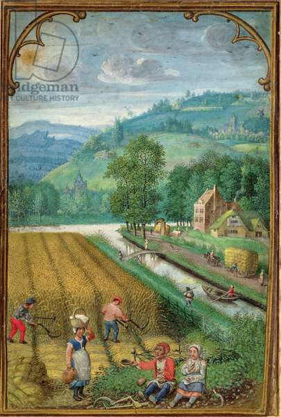 Add 18855 September: harvesting, ploughing and sowing, from a Book of Hours, c.1540 (vellum)