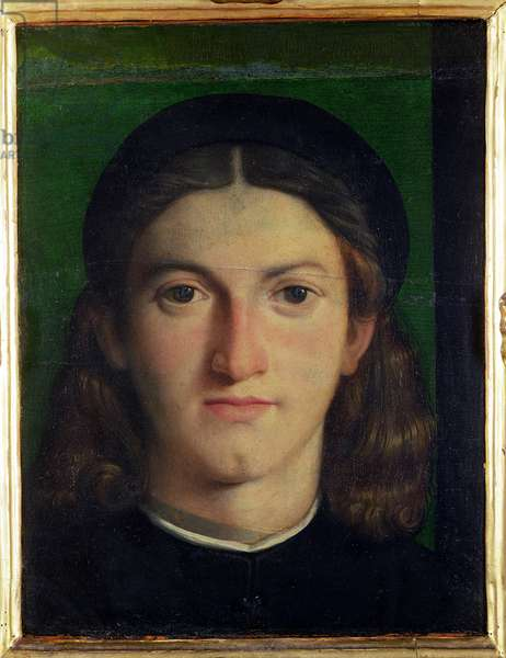 Portrait of a Young Man, c.1505 (oil on panel)