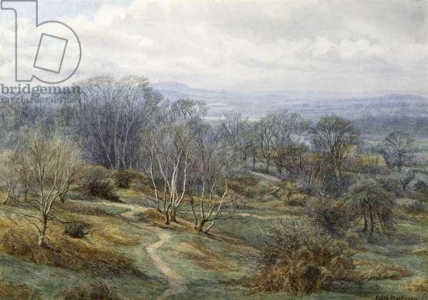 Hampstead Heath Looking Towards Harrow on the Hill, c.1880 (w/c on paper)