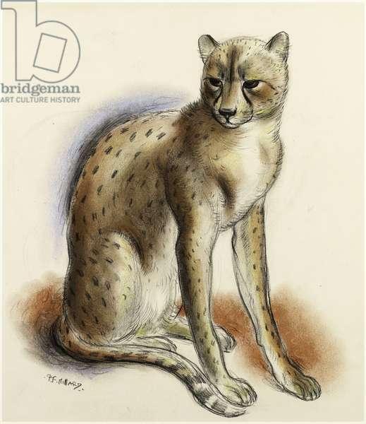 """'Cheeta""', c.1935 (chalk on paper)"