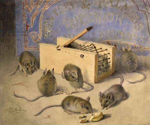 Mice and Huntley - Palmer'' Superior Biscuits, c.1920 (w/c on paper)