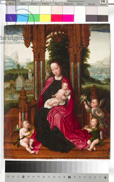 Madonna and Child with Angels, c.1510-20 (tempera & oil on panel)