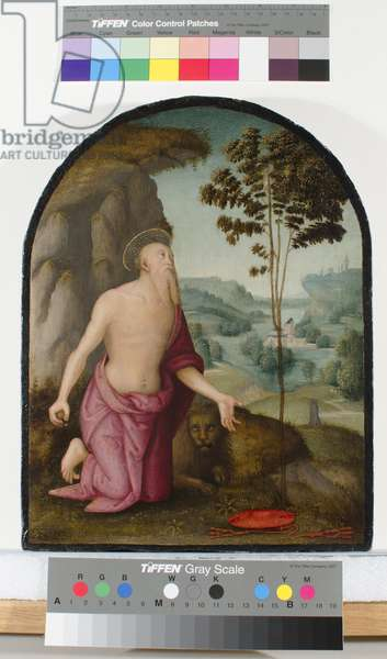 Saint Jerome in the Wilderness, c.1510-15 (oil on panel)