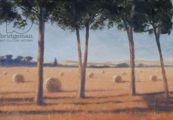 Hay Bales and Pines, Pienza, 2012 (acrylic on canvas)