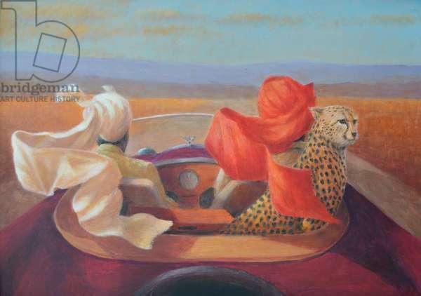 On the road, turbans + cheetah