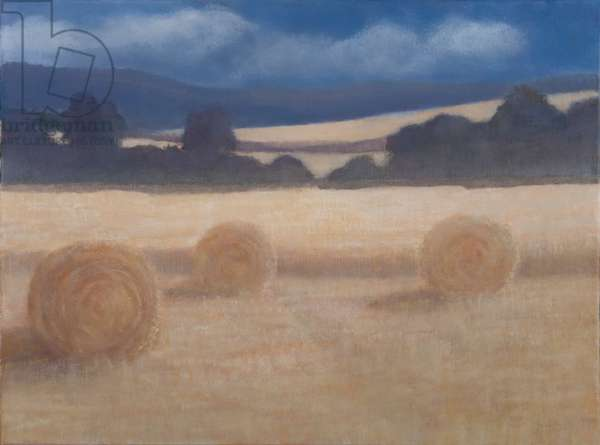 Two Hay Bales, 2012 (acrylic on canvas)