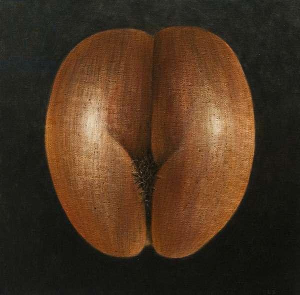 Coco de Mer, 2010 (acrylic on canvas)