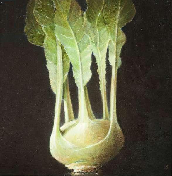 Kohl Rabi, 2012 (acrylic on canvas)