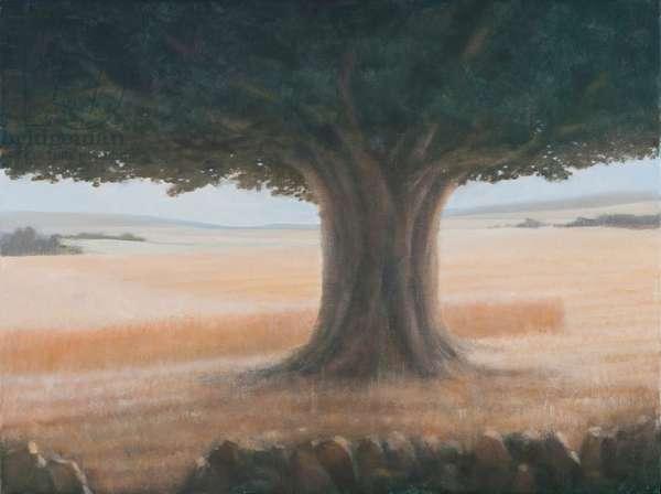 Tree, Holwell, 2012 (acrylic on canvas)