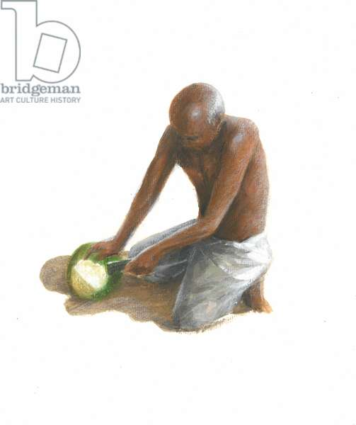 The Coconut Man, 2015 (w/c on paper)