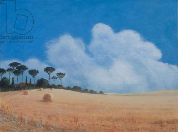 Landscape near Paganico, 2012 (acrylic on canvas)