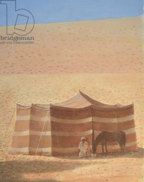 Desert Tent Rajasthan