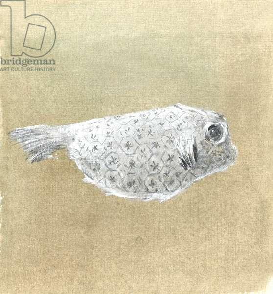 Box Fish, Sri Lanka, 2015 (w/c on paper)