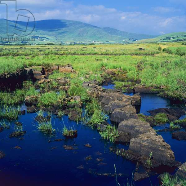 View of a peat bog, County Kerry, Ireland (photo)