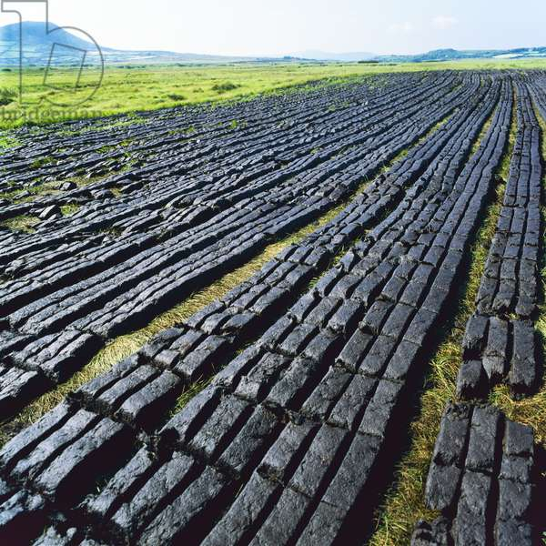 Drying peat bricks, County Kerry, Ireland (photo)