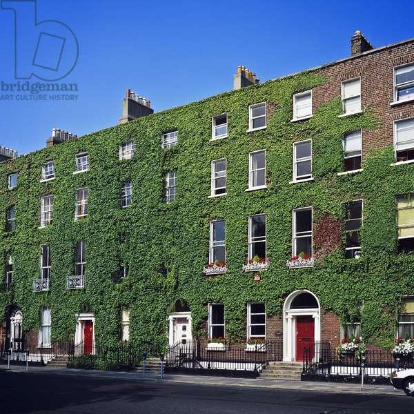 Georgian ivy-covered buildings, Dublin (photo)