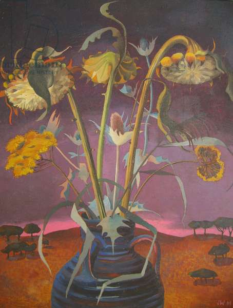 Sunflower seed-heads, 1961 (oil on canvas)