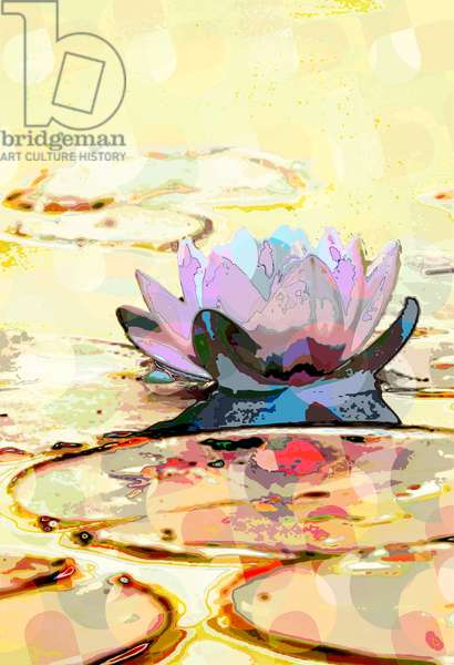 Water Lily (digital)