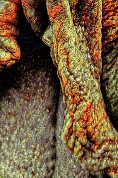 Tree Trunk,  2021 (digital)
