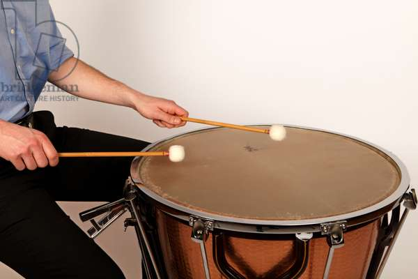 Timpani sticks or beaters in playing in the centre and at the edge  of a calf headed timpani