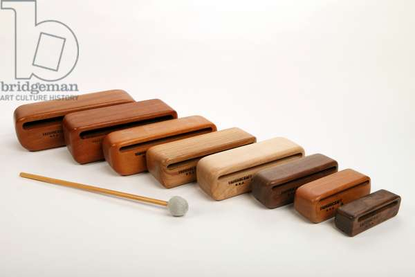 Set of 8 graduated wood blocks made from hardwoods. Made  by Vaughncraft in USA. (photo)