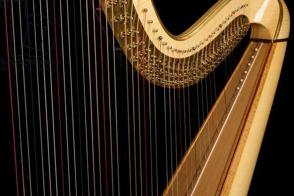 Concert Harp - close-up