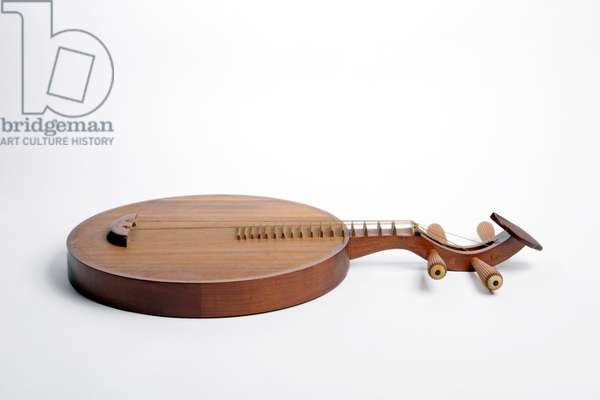 Chinese Moon shaped lute