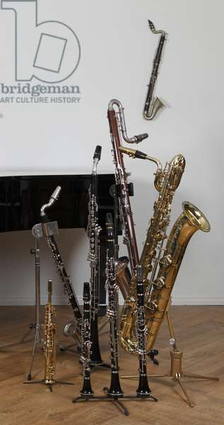 Collection of Single reed instruments - clarinets and saxophones (photo)