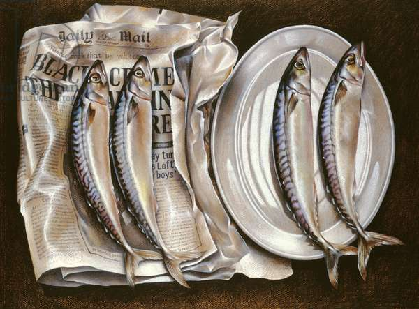 Mackerel with Mail, 1980 (pastel on paper)